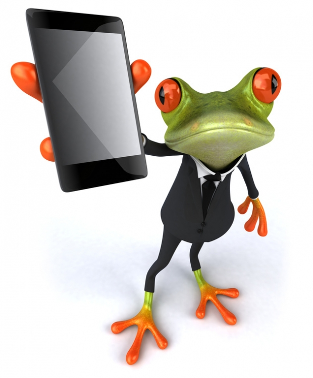 CRM grenouille